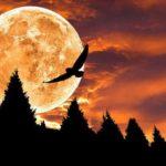 Луна в 9-м доме